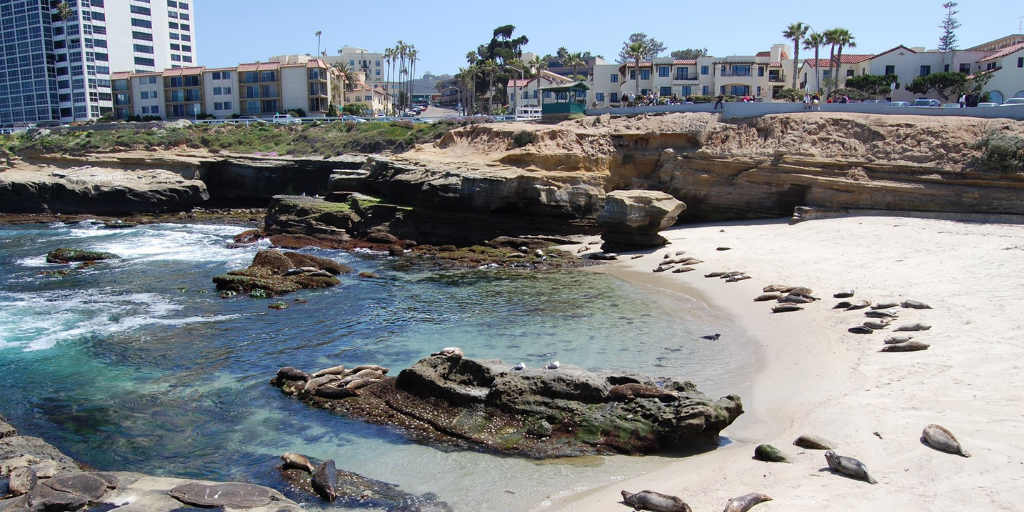 La Jolla cove on a beautiful sunny day